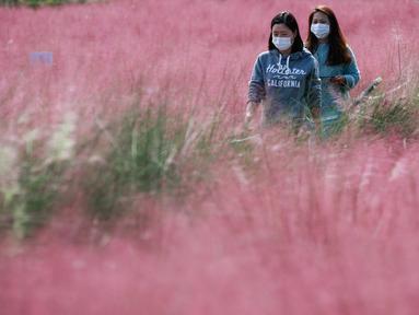 Dua orang wanita berjalan di tengah hamparan rumput muhly merah jambu di Taman Olimpiade di Seoul, Korea Selatan (15/10/2020). Korsel memutuskan untuk menurunkan pedoman jaga jarak sosial tiga tingkatnya ke level terendah setelah angka harian kasus COVID-19 relatif rendah.  (Xinhua/Wang Jingqiang)