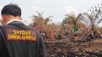 Satgas Karhutla Riau melakukan olah tempat kejadian perkara di lokasi kebakaran lahan. (Liputan6.com/M Syukur)