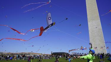 Seorang anak laki-laki berusaha menerbangkan layang-layang pada Festival Blossom Kite atau Festival Layang-Layang di dekat Monumen Washington di Washington, D.C., Sabtu (31/3). Festival ini untuk menyambut bunga sakura bermekaran. (Eva HAMBACH/AFP)