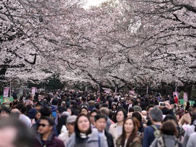 Keramaian pengunjung saat melihat bunga sakura mekar di taman Tokyo, Jepang, Jumat (23/3). Mekarnya sakura menandai datangnya musim semi di Jepang. (Foto AP/Eugene Hoshiko)
