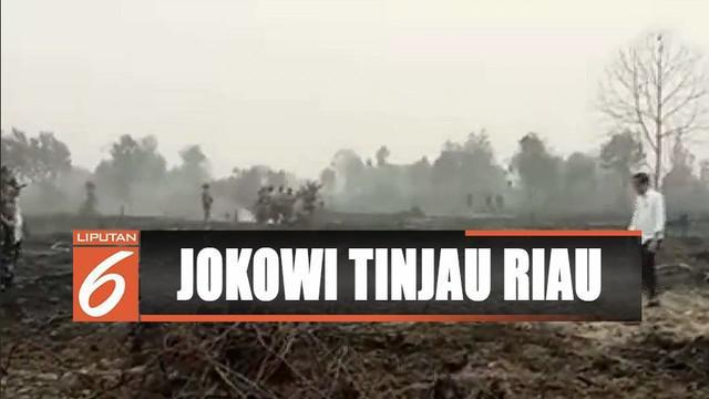 Tinjau pemadaman karhutla di Riau, Presiden Jokowi tegaskan semua pihak harus cegah kebakaran.