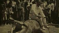 Akun Tati Tahir di Facebook yang mengunggah dua foto serta kisah penangkapan buaya berjuluk La Goroba, penghuni muara sungai di Palu, tahun 1935. (Foto: Istimewa/Facebook/Dinas Kearsipan dan Perpustakaan Kota Palu/Liputan6.com/Apriawan)