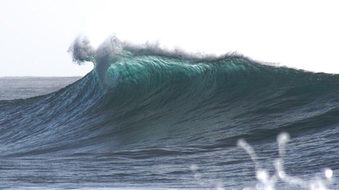 Ilustrasi tsunami (unsplash/  Holger Link)