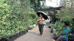 Pengunjung berjalan di antara tanaman yang dijual dalam pameran Flora dan Fauna 2018 di Taman Lapangan Banteng, Jakarta, Selasa (21/7). Pameran ini diselenggarakan oleh Dinas Kehutanan Provinsi DKI Jakarta. (Liputan6.com/Immanuel Antonius)