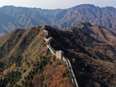Foto yang diabadikan dari udara pada 30 Oktober 2020 ini menunjukkan pemandangan musim gugur di sepanjang Tembok Besar seksi Taipingzhai di Distrik Jizhou, Tianjin, China utara. (Xinhua/Ma Ping)