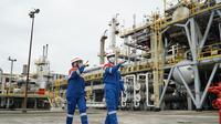 Setelah sukses memproduksi Green Diesel (D-100) melalui pengolahan minyak sawit 100%, PT Pertamina (Persero) terus melangkah maju dan siap memproduksi green energy
