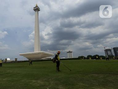 Petugas membersihkan rumput di kawasan Monumen Nasional (Monas) yang akan dijadikan arena lintasan balapan Formula E 2020, Jakarta, Selasa (11/2/2020). Formula E 2020 seri Jakarta akan memakai lintasan Monas untuk balapan mobil listrik Formula E pada 6 Juni 2020. (merdeka.com/Imam Buhori)
