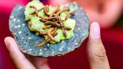 Seseorang memakan tortilla jagung dengan cacing dan guacamole di sebuah pasar di Mexico City, Meksiko, Minggu (10/6). (Ronaldo SCHEMIDT/AFP)