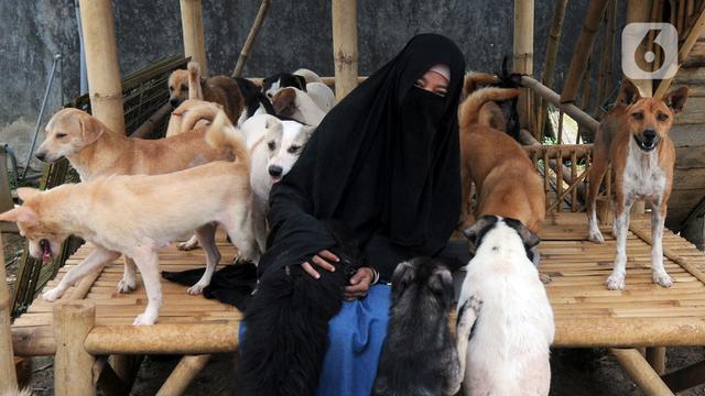 Hesti Sutrisno dengan Anjing-Anjing Liar Peliharaannya
