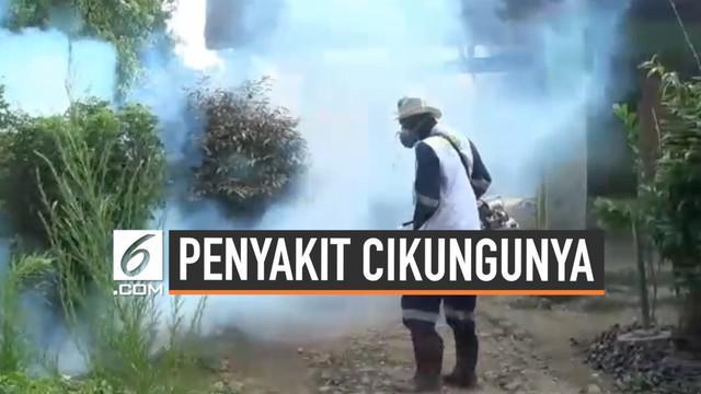 Virus Cikungunya mulai menyerang Kabupaten Bogor. Di Desa Pasarean hampir 100 orang terkena cikungunya, namun hanya beberapa warga yang dirawat di Puskesmas, sisanya memilih berobat jalan.