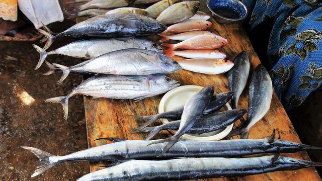 6 Resep Masakan Ikan Laut Berkuah Yang Menggugah Selera Hot Liputan6 Com