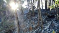 Pemadaman kebakaran hutan di Gunung Arjuno butuh dukungan water bombing atau bom air dari udara (BPBD Kota Batu)