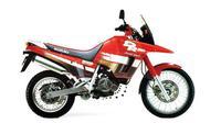 Suzuki DR 800S