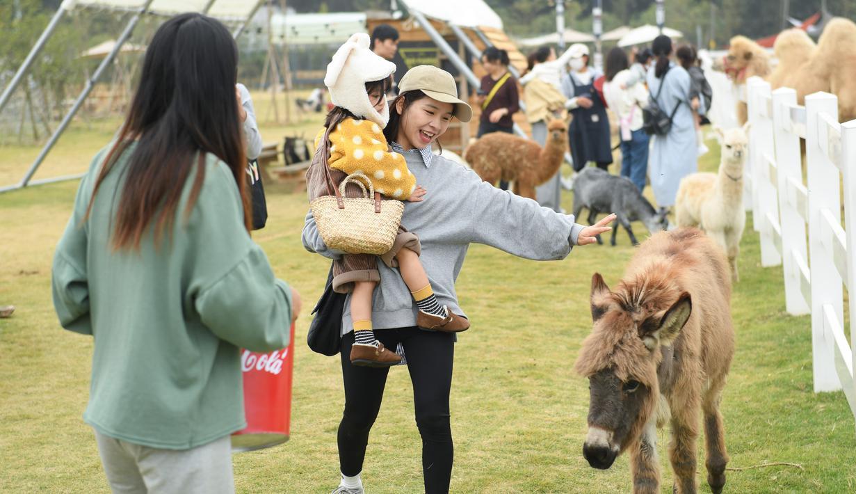 """Sejumlah orang menikmati waktu luang mereka di """"Go Farm"""" di Desa Gucheng, Kota Huzhou, Provinsi Zhejiang, China pada 17 November 2020. """"Go Farm"""", sebuah destinasi liburan yang memadukan antara perkemahan dengan tur bertema hewan peliharaan di desa kuno Gucheng. (Xinhua/Weng Xinyang)"""