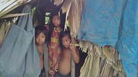 Anak-anak bermasin di Rumah Godong Orang Rimba di kelompok Sako Ninik Tuo, Makekal Ilir, Kabupaten Tebo. (Liputan6.com/Gresi Plasmanto)