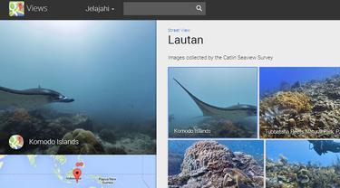 Panorama Bawah Laut Indonesia Juga Tersedia di Google Street View
