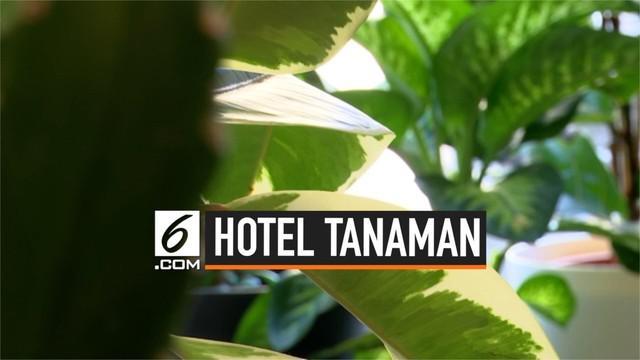 Patch Plant Hotel adalah tempat penitipan tanaman di London. Tempat ini tidak dipungut biaya dan diklaim sebagai hotel tanaman pertama di dunia.