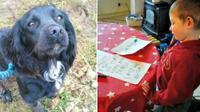 Balita yang baru bisa menulis, membuat sepucuk surat yang ditujukan untuk pencuri anjing kesayangannya.