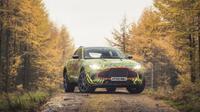 Aston Martin DBX (Aston Martin)