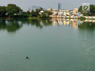 Kondisi Danau Sunter yang berwarna hijau di Jakarta Utara pada Senin (8/7/2019). Lamanya musim kemarau di Ibu kota menjadi penyebab danau tersebut berubah warna menjadi hijau yang dipicu oleh pertumbuhan lumut. (Liputan6.com/Immanuel Antonius)