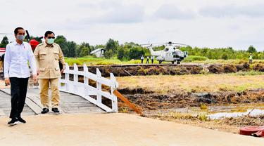 Presiden Joko Widodo dan Menhan Prabowo Subianto meninjau lahan yang akan dijadikan atau lumbung pangan baru di Pulang Pisau, Kalimantan Tengah, Kamis (9/7/2020). Pemerintah menyiapkan lumbung pangan nasional untuk mengantisipasi krisis pangan dunia. (Foto:Biro Pers Sekretariat Presiden)