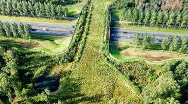 6 Fakta Unik Negara Belanda, Miliki Jalur Sepeda Bertenaga Surya Pertama di Dunia