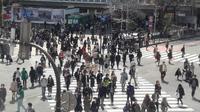 Shibuya Crossing sudah lama dikenal sebagai tempat penyeberangan pejalan kaki paling sibuk di Jepang, bahkan di dunia. (Liputan6.com/Edu Krisnadefa)