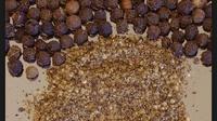 Prapti pedagang di Pasar Kliwon Rejo Amertani mengatakan, merica palsu itu dibuat dari sagu mutiara yang disangrai.