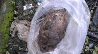 Granat nanas ditemukan di selokan Larangan, Tangerang (Pramita Tristiawati/Liputan6.com)