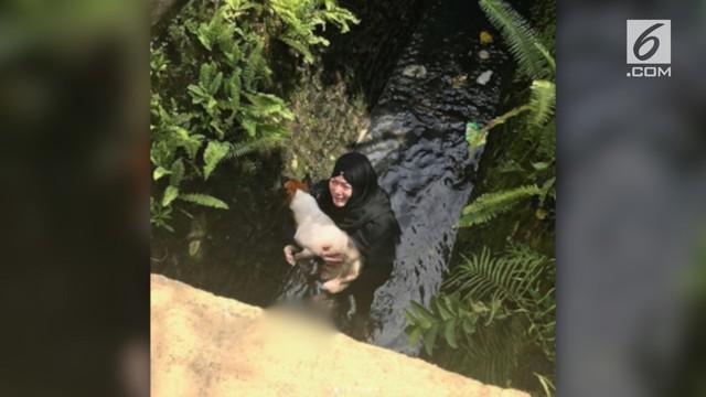 Meski mengenakan hijab, perempuan ini tak ragu menyelamatkan anjing di dalam selokan.