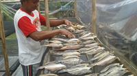 Ikan asin di Meliau berbeda dari tempat lain. (Rita Ayuningtyas/Liputan6.com)