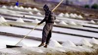 Harga garam yang tinggi semanis bulan madu justru tak bisa dirasakan sama sekali oleh petani garam di Jeneponto. (Liputan6.com/Ahmad Yusran)