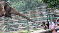Pengunjung memberi makan seekor gajah meski terdapat larangan untuk memberi makanan kepada binatang, Jakarta, Sabtu (9/7). Pengunjung Kebun Binatang Ragunan kembali membeludak di akhir libur Lebaran. (Liputan6.com/Yoppy Renato)
