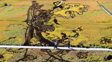Karya seni bergambar seorang putri tradisional Tiongkok yang terbuat dari varietas padi terlihat di persawahan saat musim panen di Shenyang, China (20/9). Karya seni ini bertujuan mempromosikan pariwisata di daerah tersebut. (AFP Photo/Str/China Out)