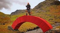 jembatan dari puluhan ribu kertas (sumber: dezeen)