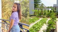 Potret Kebun Organik Milik Prilly Latuconsina, Ada Sayur Hingga Buah-buahan. (Sumber: YouTube/Prilly Latuconsina)