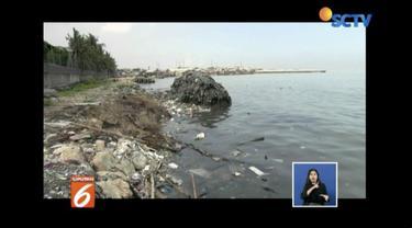 Tepi Pantai Marunda, Cilincing, Jakarta Utara, kembali tercemar sampah rumah tangga.