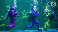 "Sejumlah penyelam berkostum kelinci mementaskan drama teatrikal ""Rabbit Underwater Show in Mission: Save the Ocean"" di Sea World, Ancol, Jakarta, Selasa (30/3/2021). Pertunjukan digelar untuk mengedukasi warga dalam menjaga ekosistem laut dari sampah atau polusi laut. (Liputan6.com/Faizal Fanani)"