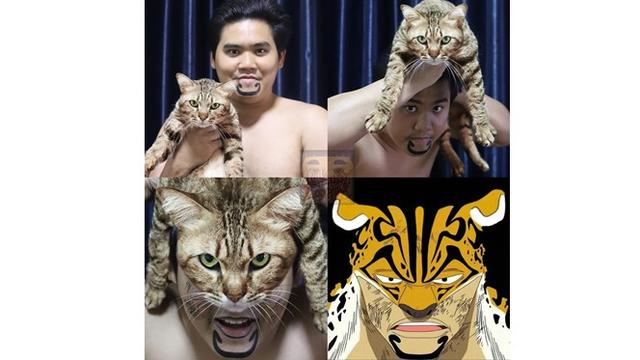 6 Cosplay Low Budget Libatkan Kucing Ini Kocak, Bikin Ketawa