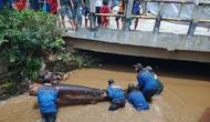 Satgas Banjir DPUPR Kota Depok mengevakuasi batang pohon yang menutup aliran kali di Kecamatan Pancoran Mas, Kota Depok. (Istimewa)