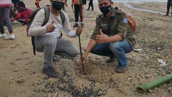 Jaga Ekosistem Perairan, 100 Bibit Pohon Mangrove Ditanam di Pantai Damba