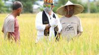 Menteri Pertanian Syahrul Yasin Limpo. Dok Kementan