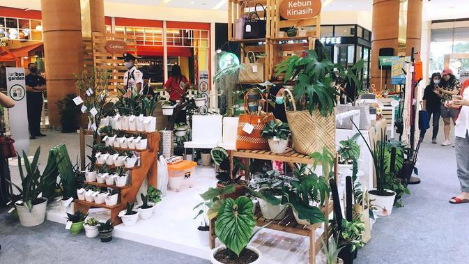Menengok Pameran Urban Garden, Ada Tanaman Hias Seharga Rp 7,5 Juta
