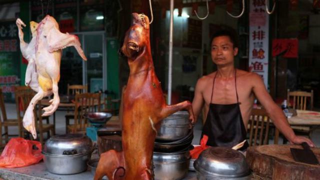 Dobrak Tradisi Aktivis China Kampanyekan Larangan Konsumsi Daging