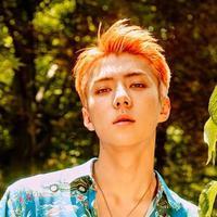 Maknae dari EXO, Sehun tidak hanya dianugerahi dengan wajah yang tampan saja. Idol kelahiran 12 April 1994 ini juga jago ngedance. (Foto: soompi.com)