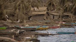 Rumah-rumah yang ditinggalkan dan pohon kelapa tertutup abu vulkanik letusan Gunung Taal di Laurel, Provinsi Batangas, Filipina, Rabu (16/1/2020). Pihak berwenang Filipina memperingatkan bahwa potensi Gunung Taal untuk kembali meletus masih tinggi. (Ted ALJIBE / AFP)