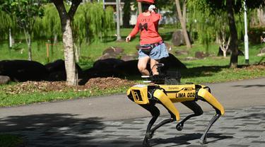 Seorang perempuan berolahraga melintasi robot berkaki empat yang mirip anjing, Spot selama uji coba dua minggu di Bishan-Ang Moh Kio Park, Singapura pada 8 Mei 2020. Robot itu menyiarkan pesan untuk mengingatkan warga untuk melakukan jaga jarak di tengah pandemi virus corona. (Roslan RAHMAN/AFP)