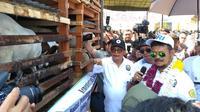 Yasin Limpo di Kabupaten Serdang Bedagai, saat meluncurkan Program SIKOMANDAN (Sapi Kerbau Komoditas Andalan Negeri) serta panen pedet, Kamis (20/2/2020)