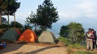 Sejumlah pengunjung mendirikan tenda di kawasan wisata alam Gunung Putri Lembang di Kabupaten Bandung Barat, Kabupaten Bandung Barat, Kamis (20/8/2020). (Liputan6.com/Huyogo Simbolon)