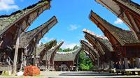 Lima Atraksi Pesona Aspal Hitam di Festival Budaya Kota Tua Buton